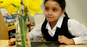 Reception Drawing Daffodils