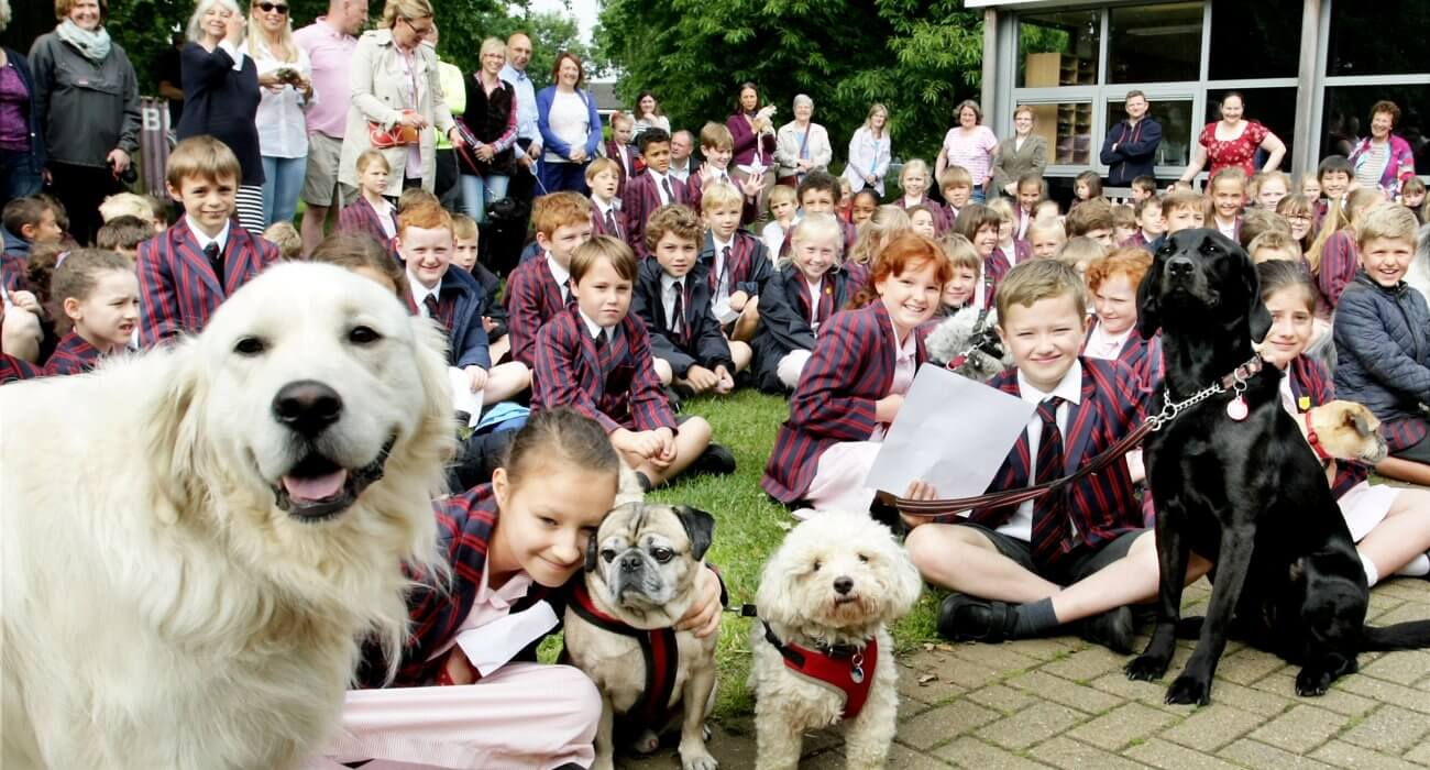 Prep Pet Assembly